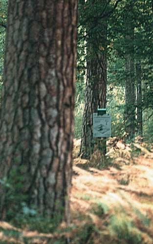 Gamme de Signalétique Parc Naturel Vosges du Nord et Parc Naturel Ballon des Vosges